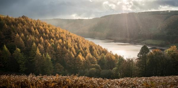 Abbey Bank Autumn by jamesgrant