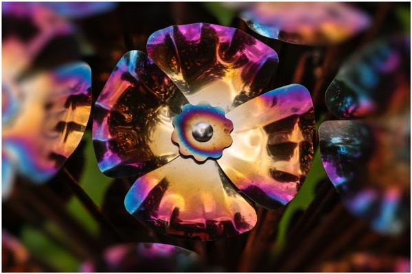 Garden Art by capto