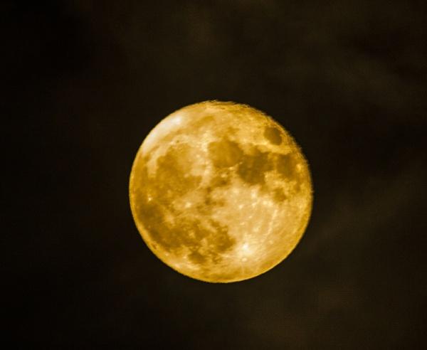 moon by arnieg