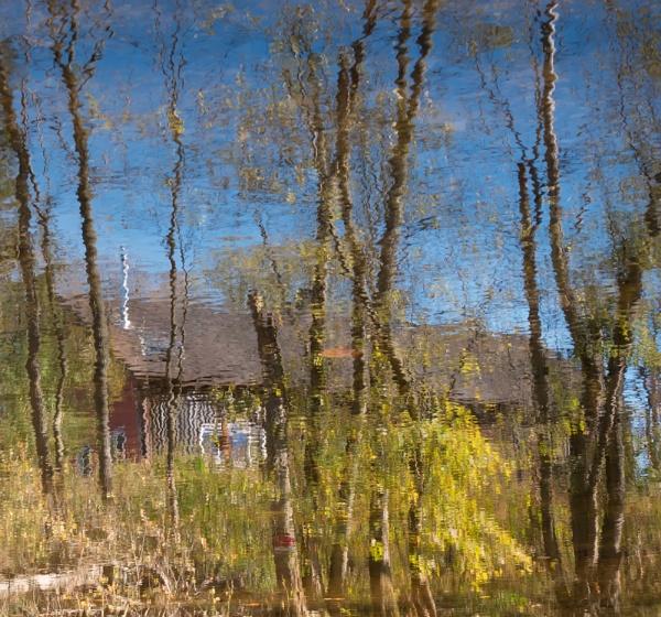 Monet Under the Bridge by taggart