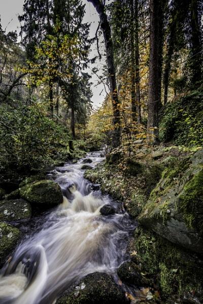 Wyming Brook by davereet