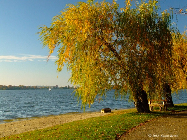 Autumn is here again by instone67