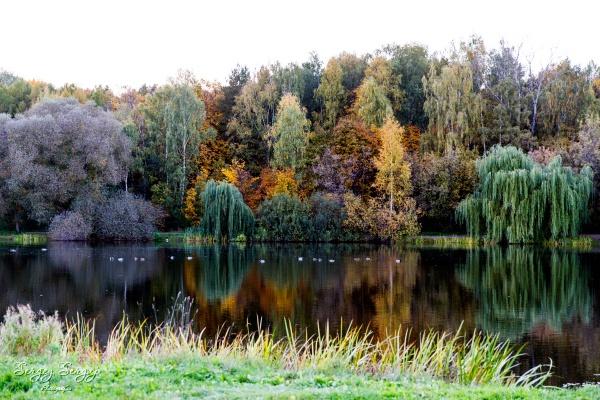 Autumn\'s colors by sergeysergaj