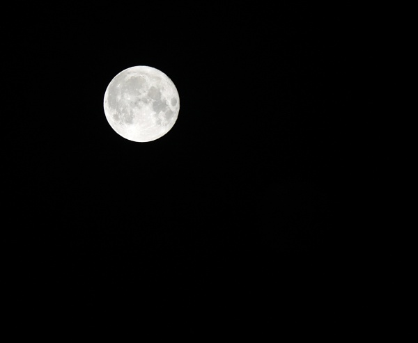 Super Moon by pcollingwood