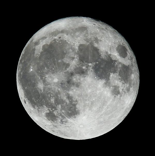 Super moon by oldgreyheron