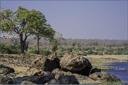 Rocks at Chobe River