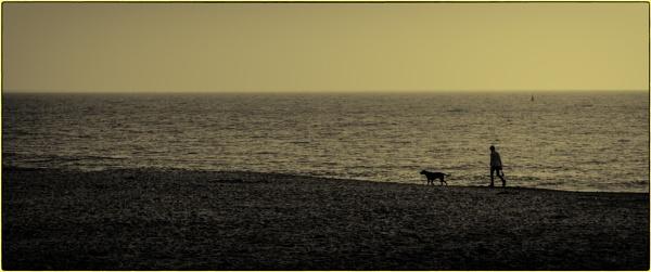 Dorset Life 3 by Kurt42