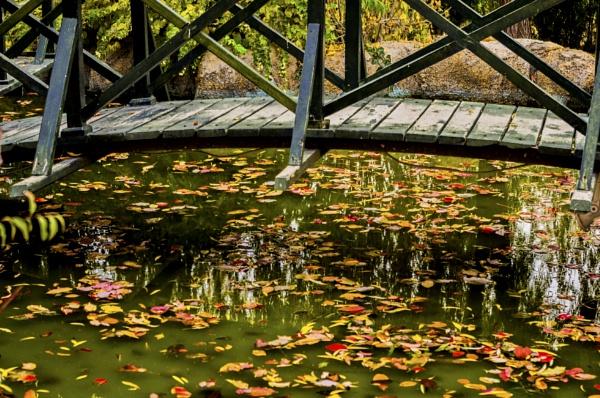Bridge over the Pond by nonur