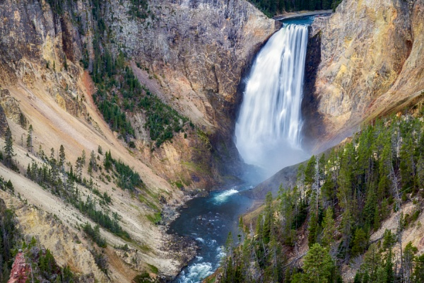 Lower Yellowstone Falls by Phil_Bird