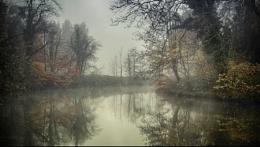 painted fog