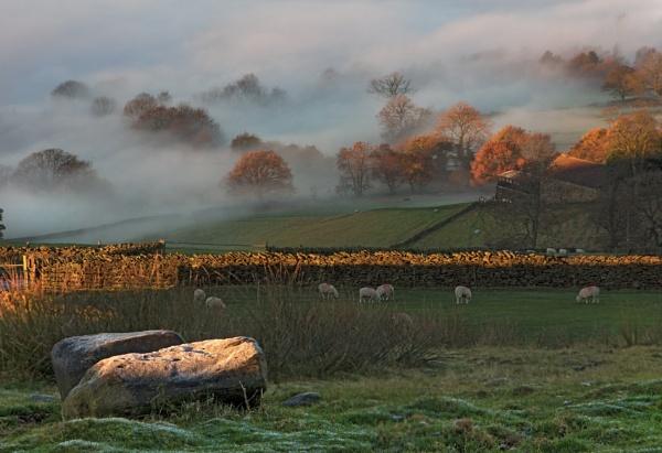 Morning on the farm by HelenaJ