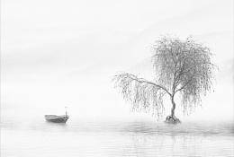 Bird on a Boat 2