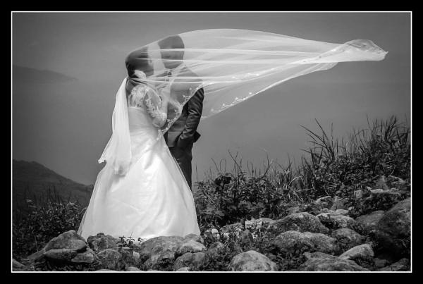 The wedding dress by Prizm