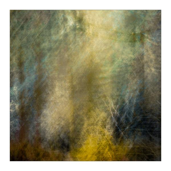 Woodland by gerainte1