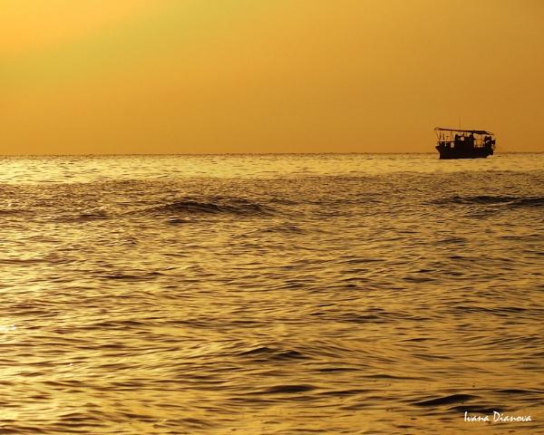 Golden sea by idiabb