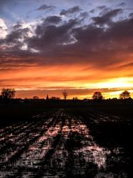 Orange skyview