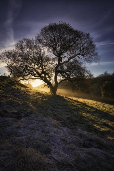 hayburn wyke morning light by Lee100