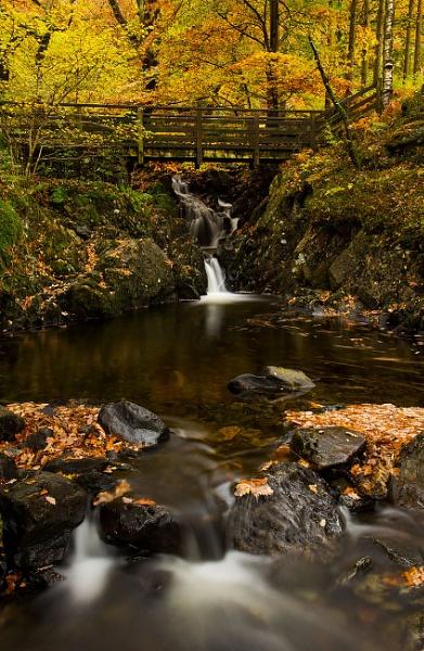 Autumn Flow 2 by martin.w