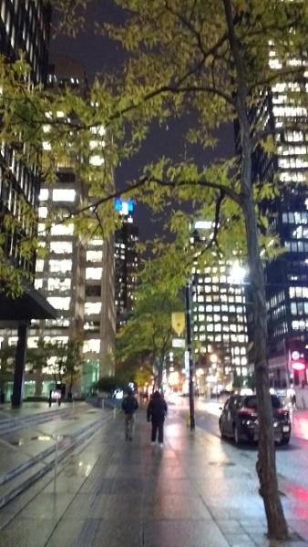 Uptown Toronto by moglen