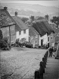 Dorset Life 11