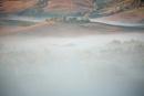 Fog at Dawn by rontear