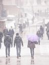 Snow walk by rontear