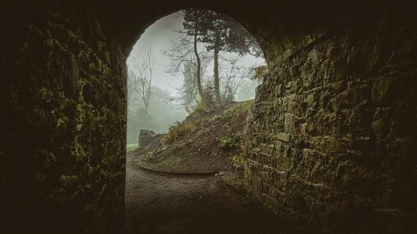 walk in the fog 2 by atenytom