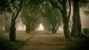 walk in the fog 4 by atenytom