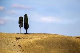Tuscan Duo