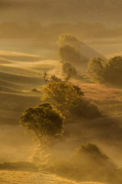 Tuscan Dawn by Irishkate