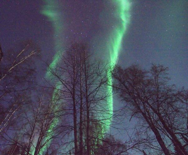 Winter Lights by Rebeak
