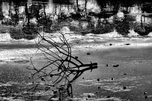 Birnie Shadows by widtink