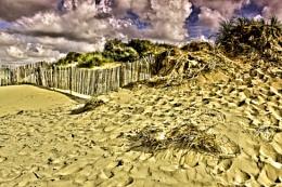 wood sky  and sand