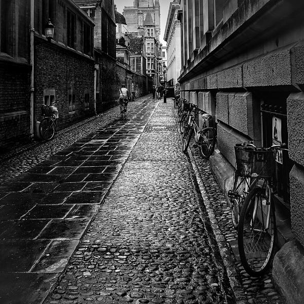 Bicycle Lane by Diggeo