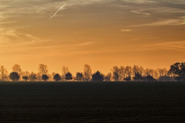 Morning sun by chrisbryan