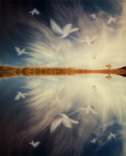 ...I\'m loving angels instead... by ambiaso
