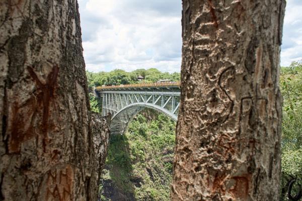 Narrow Bridge? by Gerryatric