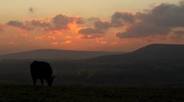 sunrise from Mt. Caburn