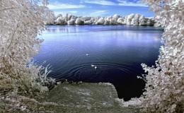 Weybread Lakes