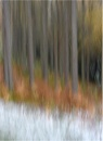 Autumn to Winter ICM by MalcolmM