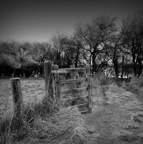 Frosty Gate by optik