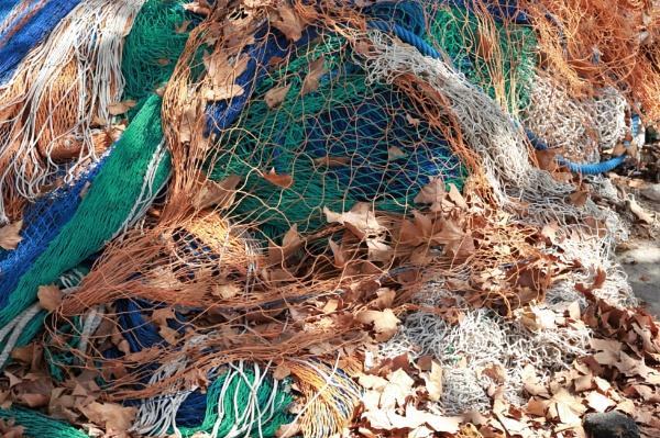 tangled net by HoneyT