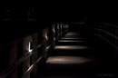 Lights. by kuvailija