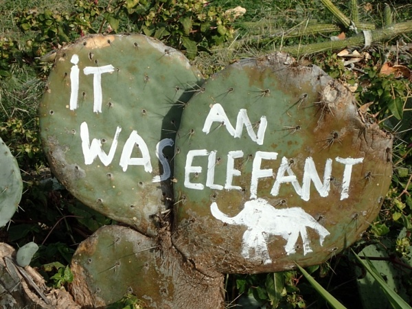 "Unusual Sign   ""It was a White Elephant\"" by voyger1010"