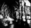 Spirit Shadows by Nikonuser1
