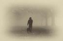 Foggy doggy by Alda