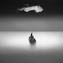 Rock, Cloud and Bird