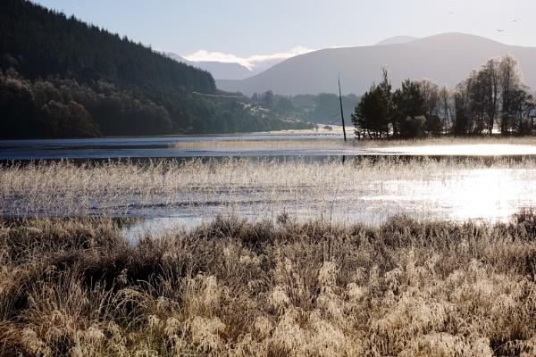 A frosty Pityoulish Loch. by macprints