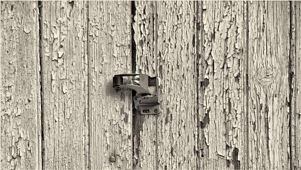 Barn Door Latch:   1