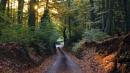New Road by jon gopsill